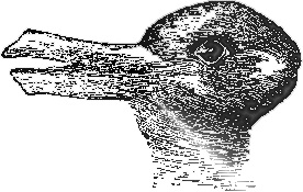 Image result for duck or rabbit